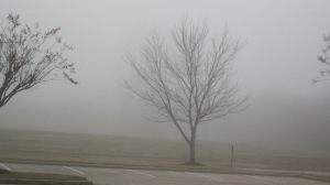Scary, thick fog like in a 'Zombie' movie