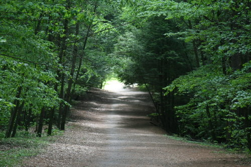 Rainy Marathon Trail